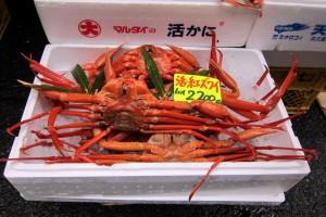 Tokyo 3: Tsukiji Fish Market Tour