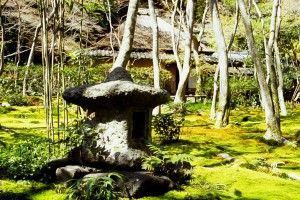 Kyoto Walk 5: Arashiyama