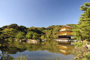 Kyoto Walks